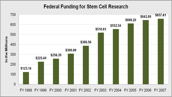 Federal funding for stem cell research essay